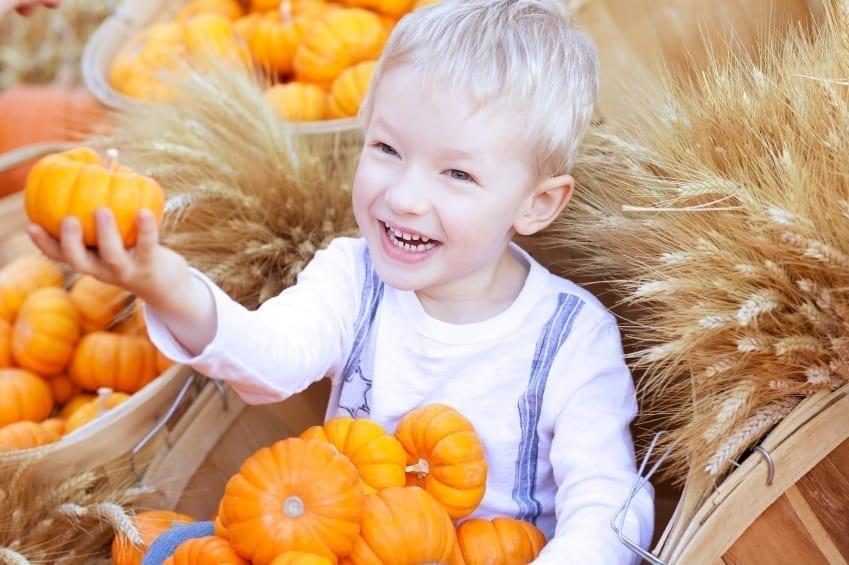 Little boy holding pumpkins