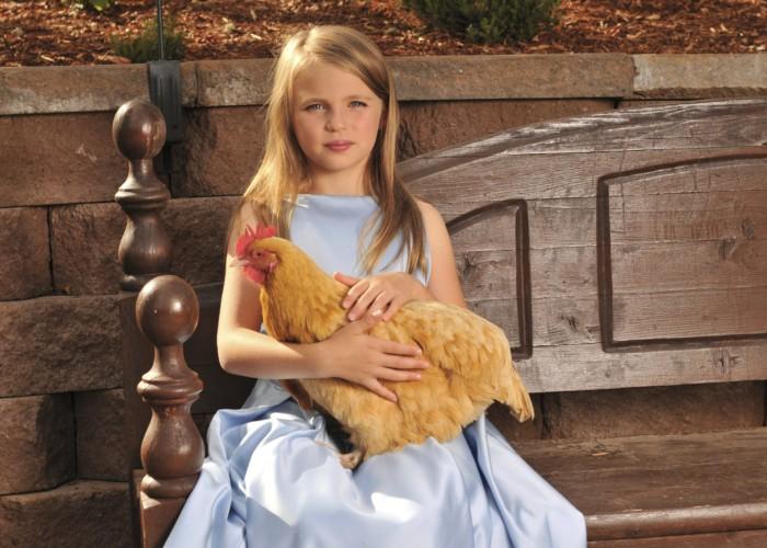 ChickenAndchild