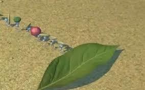 A Bug's Life Leaf